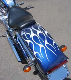 300 Spyder Paint Rear Fender Flames